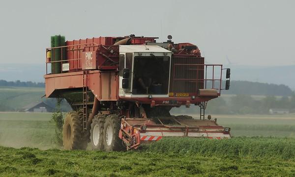 Pea Harvest