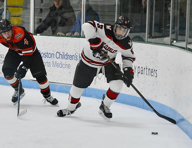 wellesley hockey