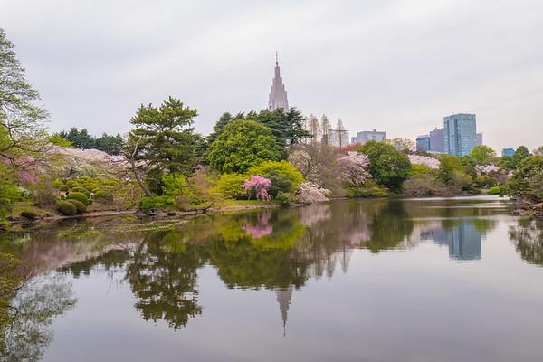 Tokyo Sakura 2017 Vol.2