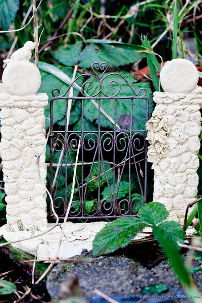 #47 Secret Garden