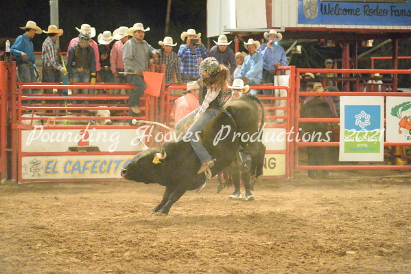 Womens Bulls