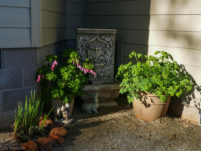 Sunset House in Spring (27 of 27).jpg