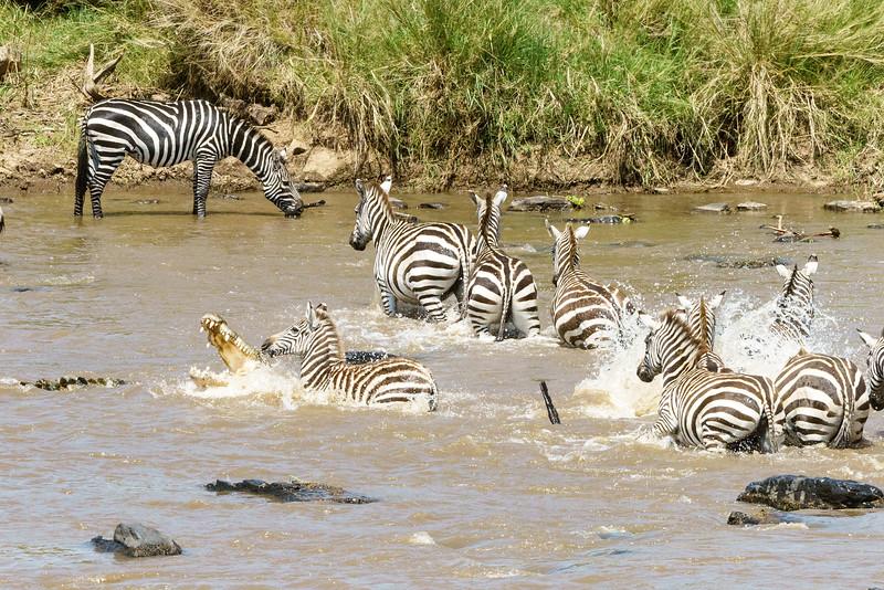 Kenya 2015-03795.jpg