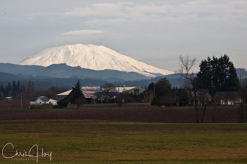 Mt. St. Helens as seen from Ridgefield, Washington