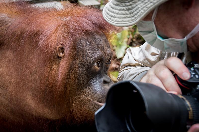 Borneo-2273.jpg