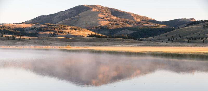Swan-Lake-3.jpg