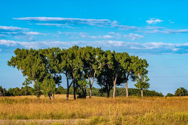 Horn Ranch-3750.jpg