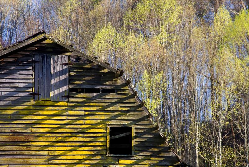 Yellow Barn.jpg
