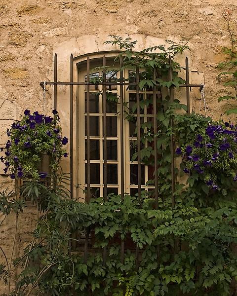 purple window.jpg