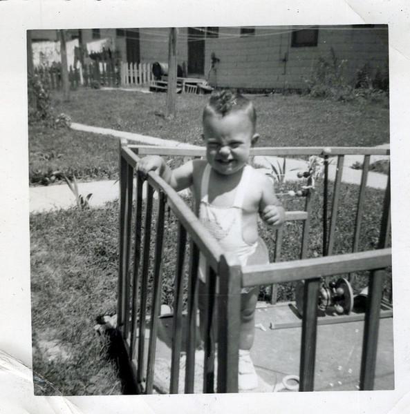 1951 Butch 1 year old.jpeg