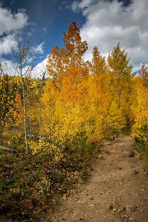 2019 Colorado Autumn