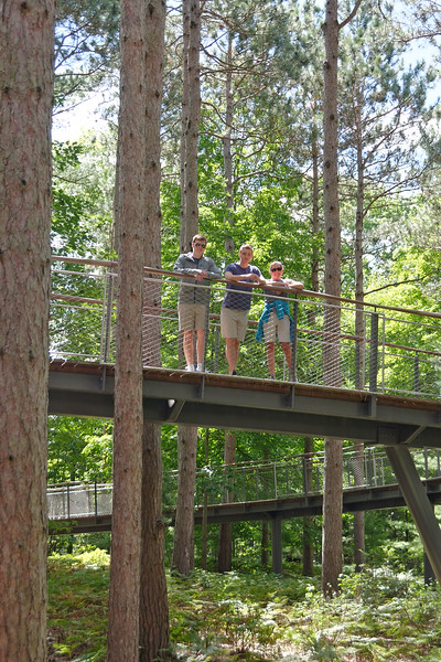 Dow Gardens - Whiting Forest Canopy Walk (2).jpg