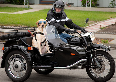 Cibo and the URAL