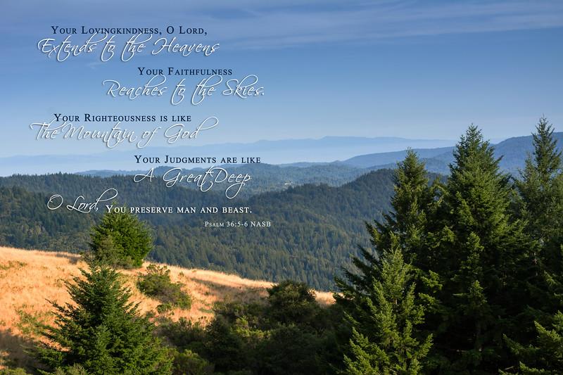 19_Psalm36-5-6_NJ_2014-6-14_0237e.jpg