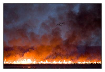Montezuma Wildfire - 4/4/10