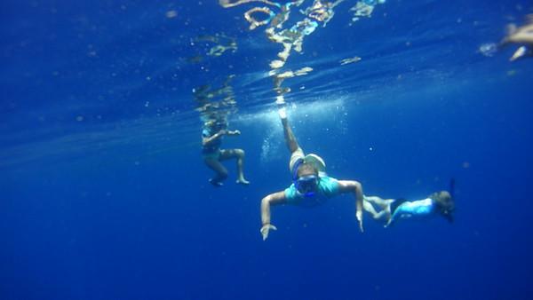 Coral Reef Week 1