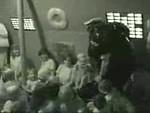 2002 VBS Videos