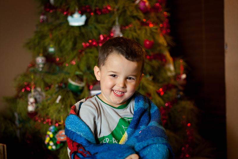 Christman tree portraits 2018