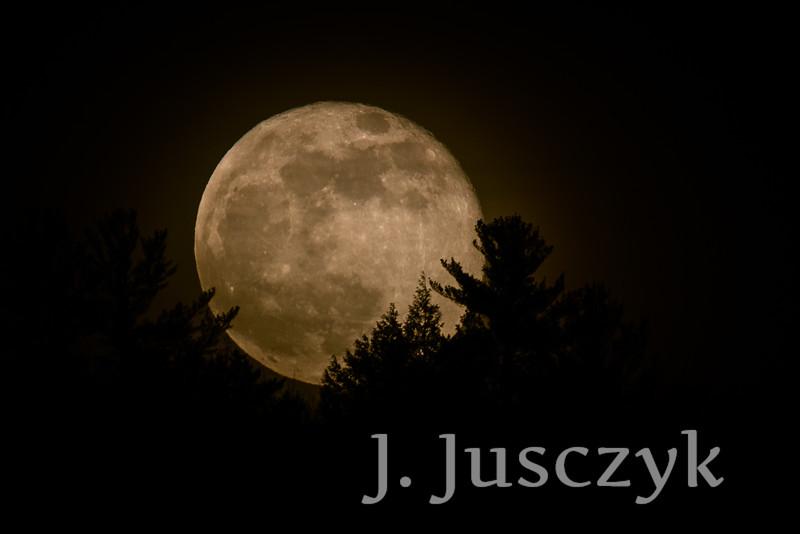 Jusczyk2021-7986.jpg