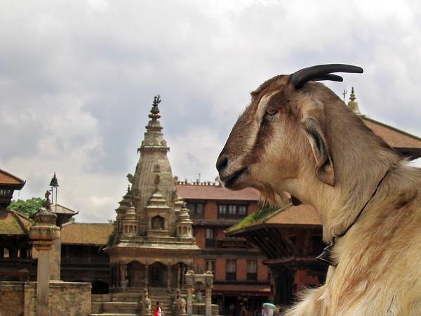 Nepal - 2005