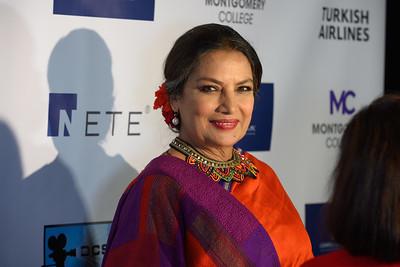 2019 DCSAFF - DC South Asian Film Festival
