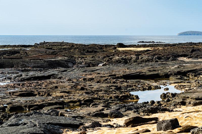 Galapagos-3315.jpg