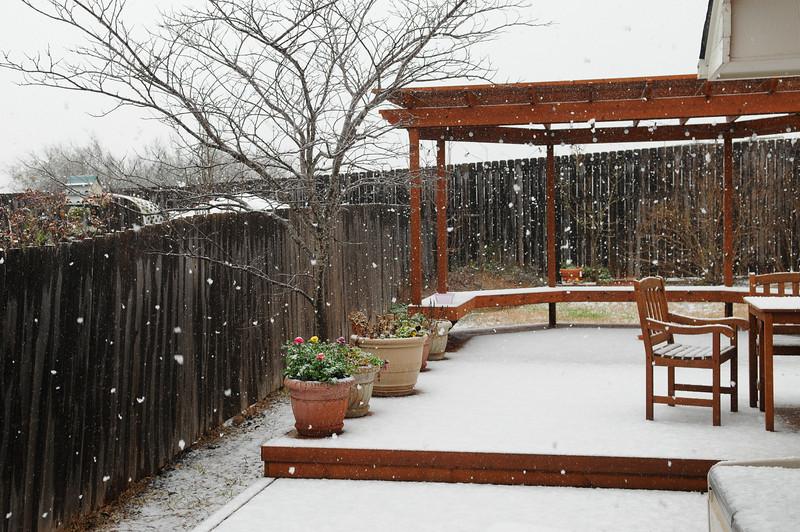 20100223_snow_013.JPG