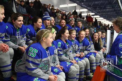 Girls Varsity Hockey vs Hasting - Section Semis