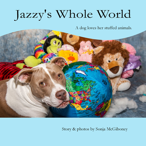 Jazzy's Whole World  Cover1.jpg