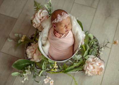 Gianna's Baby Portraits