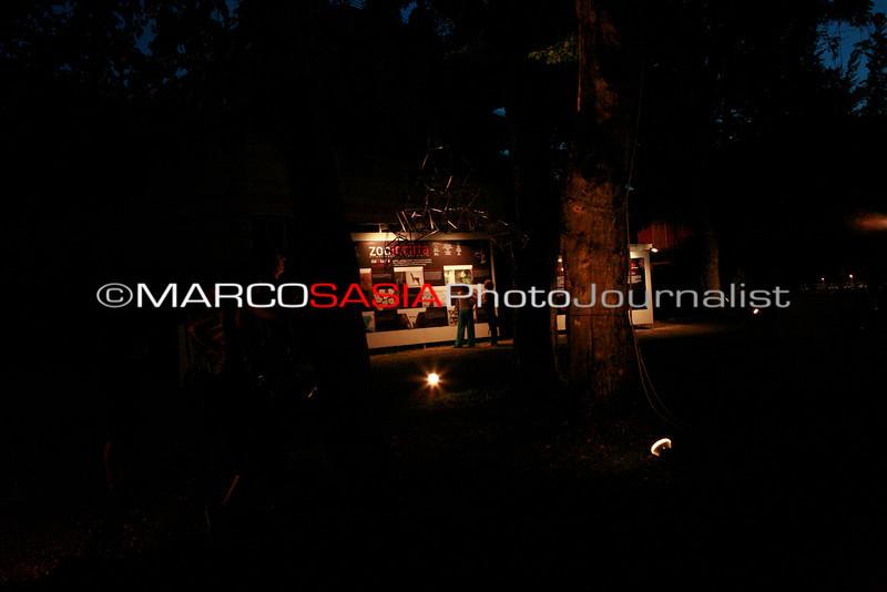 0082-ZooArt-03-2012.jpg