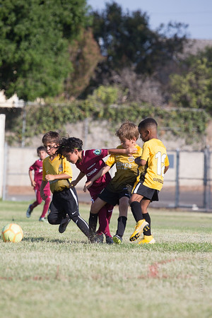 Enzo's Soccer Game