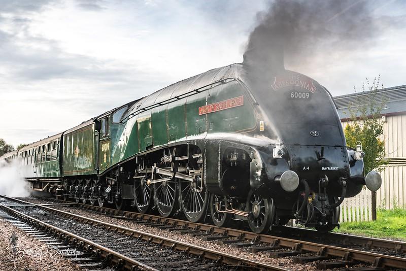 Bluebell Railway - Giants of Steam-87427.jpg