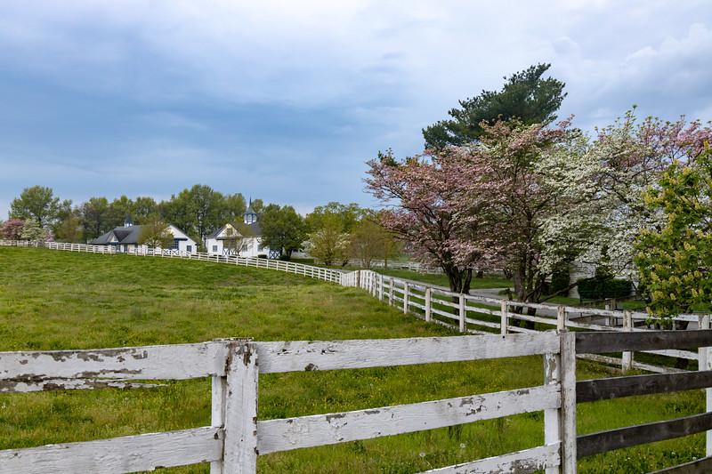 Manchester Horse Farm Lexington KY  April 25, 2019   023.jpg