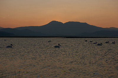 Antero Reservoir