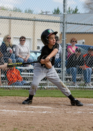 Buffalo Youth Baseball 2012