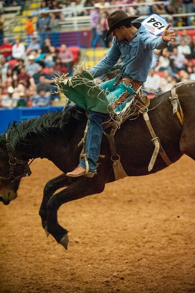 Austin_Rodeo-2794.jpg