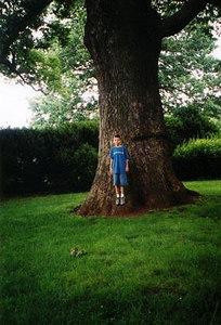 5 Jared---250-year-old-tree-.jpg