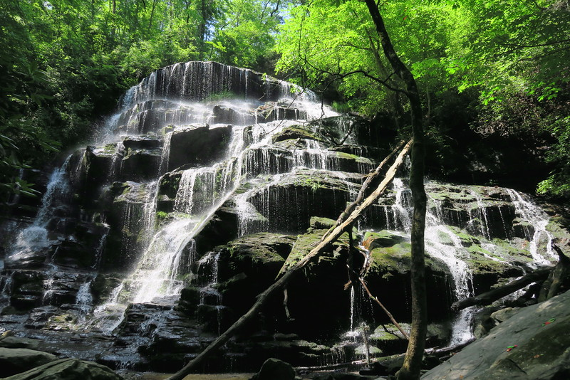 Yellow Branch Falls (6-6-15)