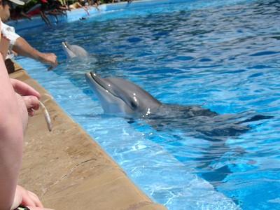 SeaWorld San Antonio 4/24/2005