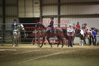 Class 15 English/Gaited Trail - Open