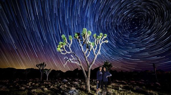 joshua tree starrynight