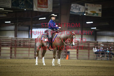 Sun 68. Novice AMA Ranch Reining