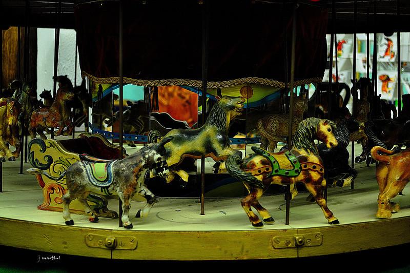 donkey ride 7-12-2012.jpg