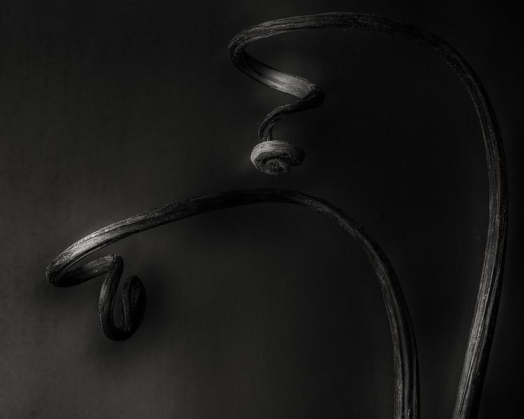 fiddleheads.jpg