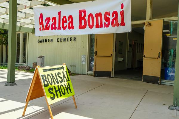 Azalea Bonsai Show