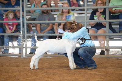 Market Goat Ringshots - 1
