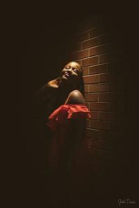 Dara's Fashion Nova Inspired Birthday Shoot | Fantan Alley - Victoria BC.
