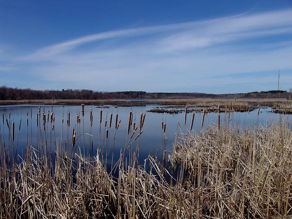 Mendon Ponds - Spring 2005