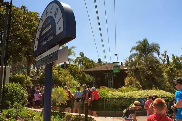 2014 San Diego Zoo